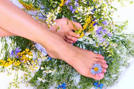 Народные средства от варикоза вен на ногах