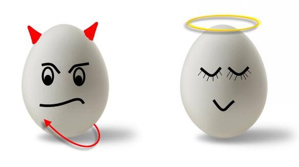 польза и вред куриного яйца