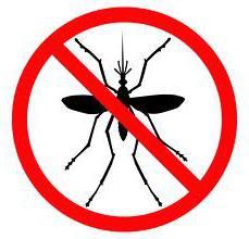 Лихорадка Западного Нила: симптомы и профилактика