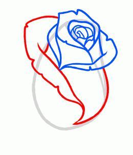 как легко рисовать розу