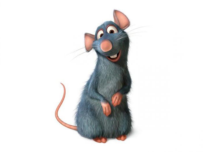 Крыса и Собака: совместимость в любви, дружбе и деловой сфере