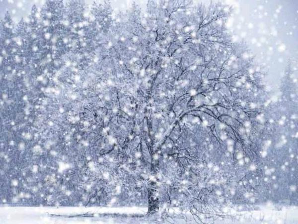 применения термобелья к чему снится снег белый осенью популярностью функциональностью