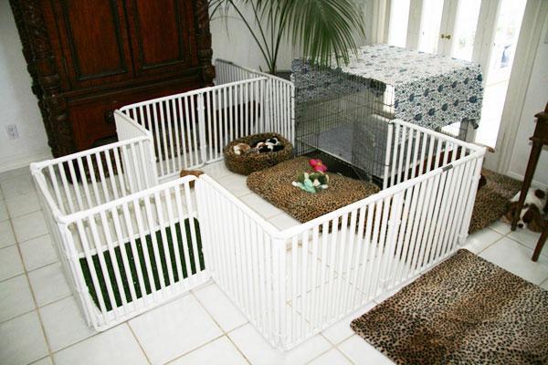 загон для маленьких собак