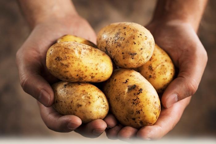 запекаем картошку с мясом в духовке