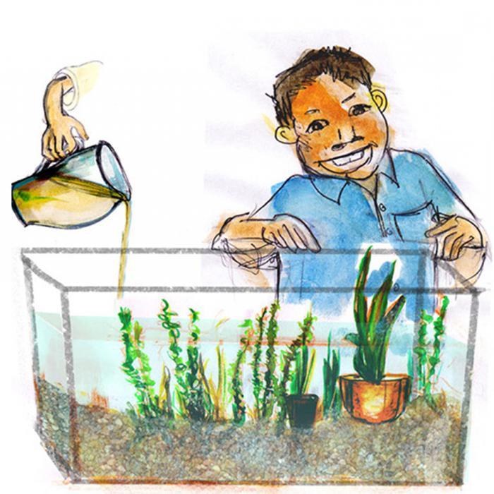 сделать аквариум своими руками большой