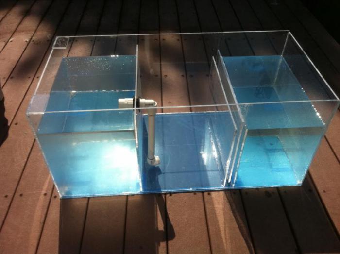 Как самому сделать аквариум в домашних 824