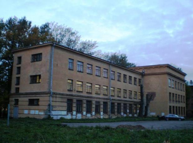 петровский колледж адрес