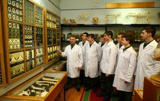 Санкт-петербург военно медицинская академия отзывы Справка для оформления опеки над ребенком Юго-Западная