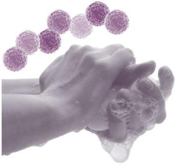 профилактика норовирусной инфекции