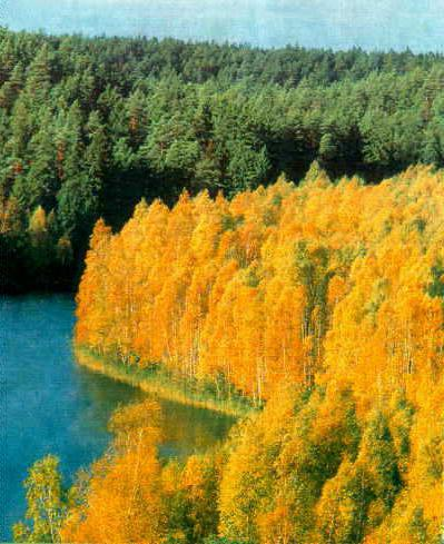 голубые озера беларусь солигорск