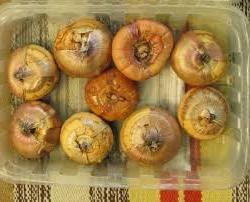 При какой температуре хранить луковицы гладиолусов