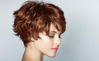 Короткие стрижки на вьющиеся густые волосы фото