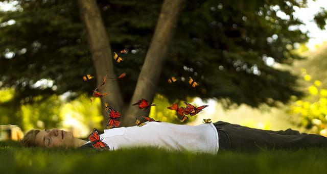 """Понятие """"бабочки в животе"""": что это и что оно означает?"""