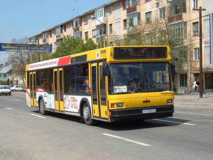 Автобусы Из Орши До Болбасово