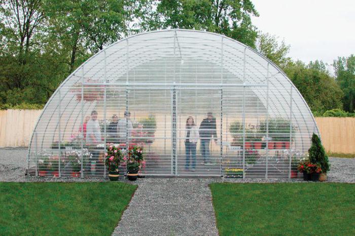 как построить теплицу для зимнего выращивания огурцов