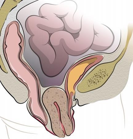 Резкие боли в животе при беременности в третьем триместре