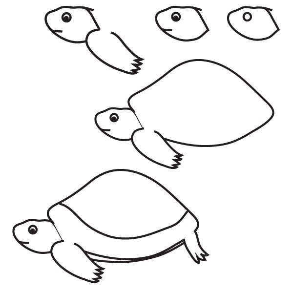 Нарисовать черепаху поэтапно - 69