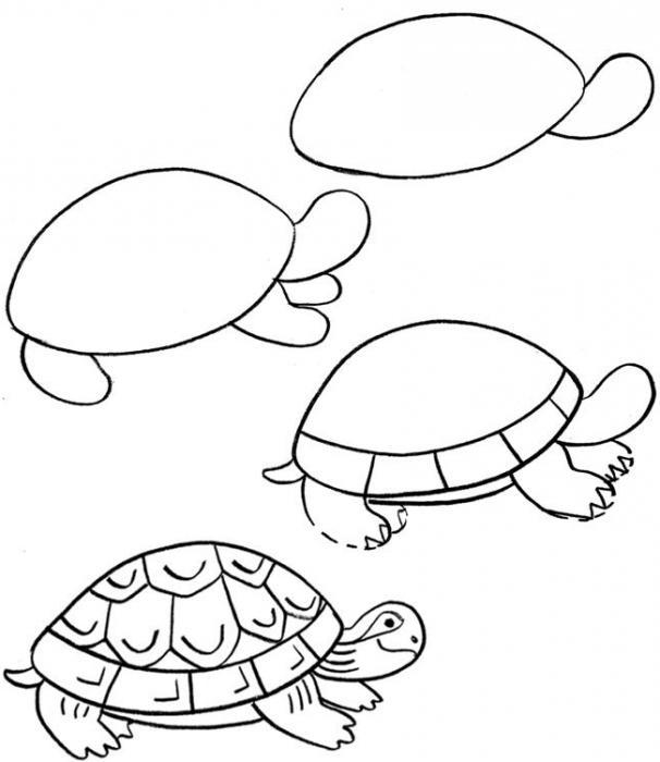 Нарисовать черепаху поэтапно - af3
