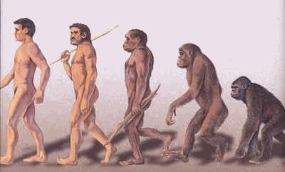 жизнь первых людей на земле