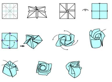 Розы кавасаки инструкция с пошаговым фото