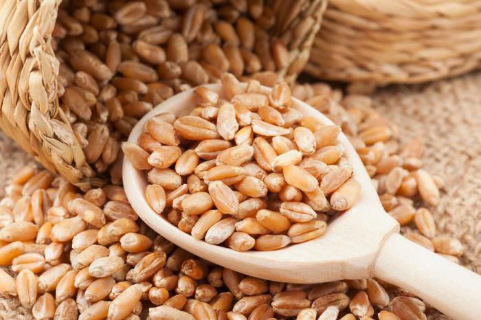 Как сделать самогон в домашних условиях на пшенице