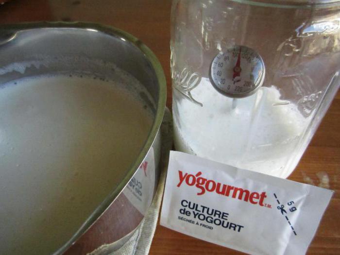 термостатный йогурт в домашних условиях