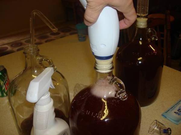 Рецепт домашнего вина из голубики в домашних условиях 521