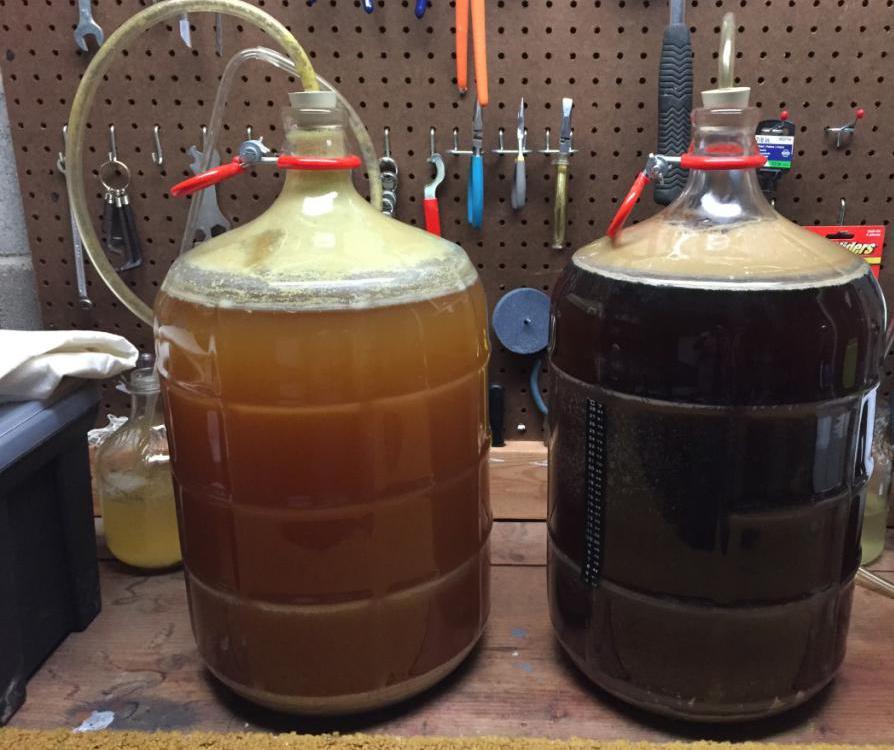 shutter fermentation