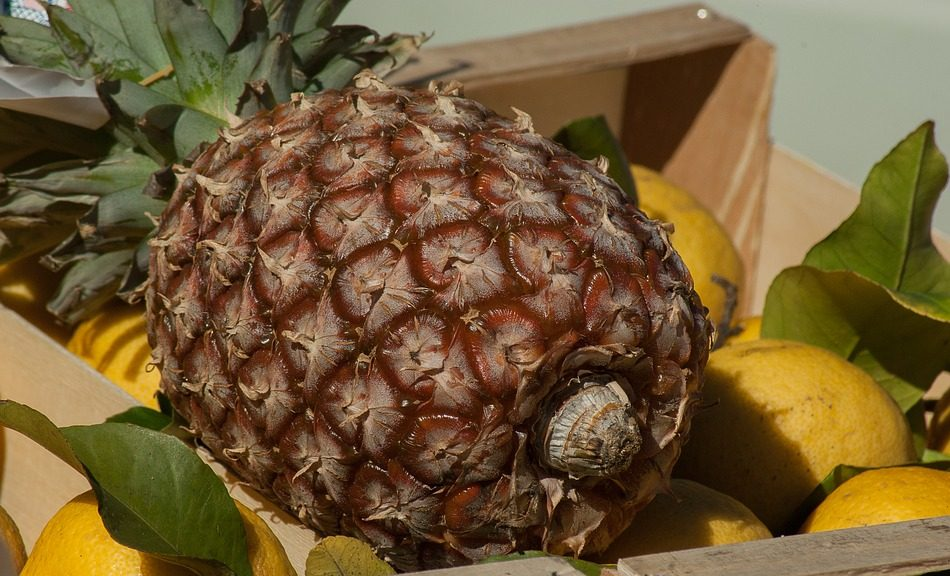 how to choose a ripe pineapple in the store