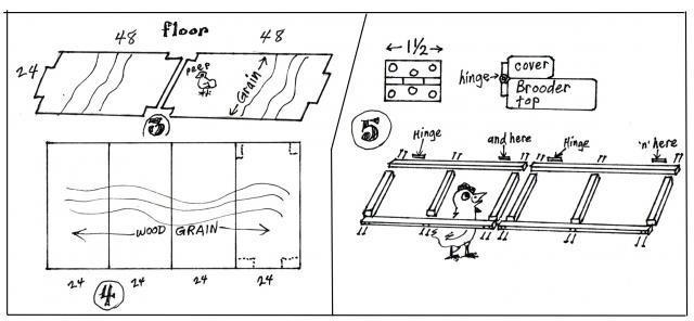 чертеж брудера для перепелов