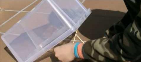 как сделать ловушку для птиц из коробки