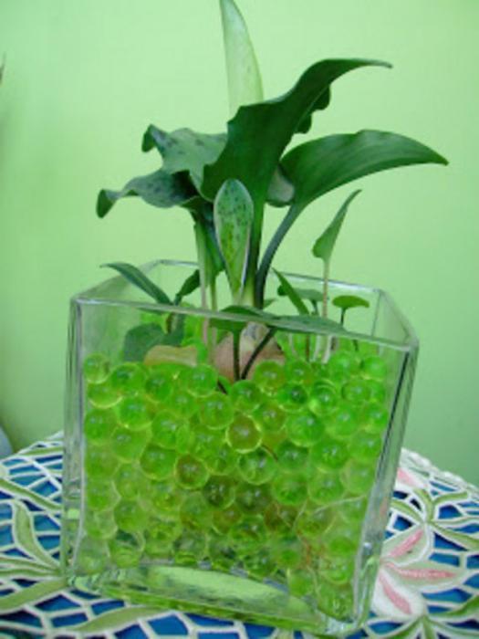 гидрогель для растений цена