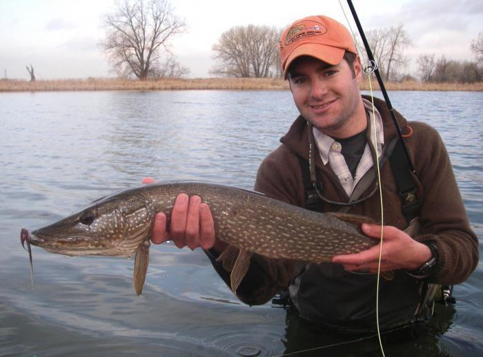 Рыбалка в марте и не только