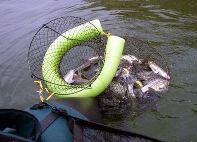 самоделки для рыбаков