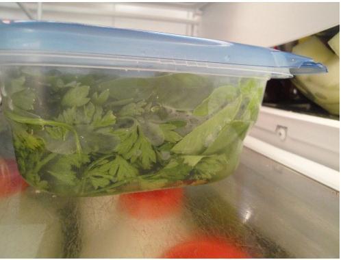 Как хранить в холодильнике зелень: несколько простых способов