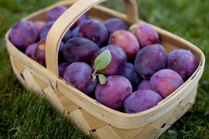 Какие фрукты полезны для беременных - Беремама
