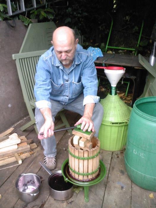 приготовление вина из изабеллы
