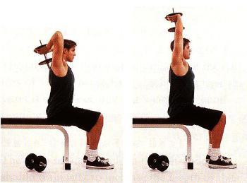 Комплекс упражнений с гантелями в домашних условиях с картинками 2