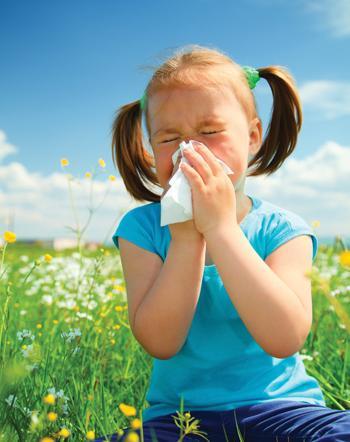 сколько капель зодиака нужно взрослым при аллергии