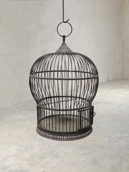Как сделать клетку для попугая?