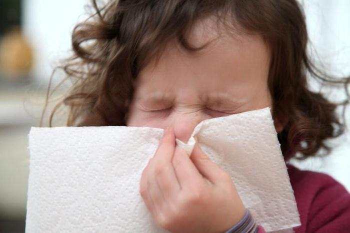 Болезни желчного пузыря лечение народными средствами