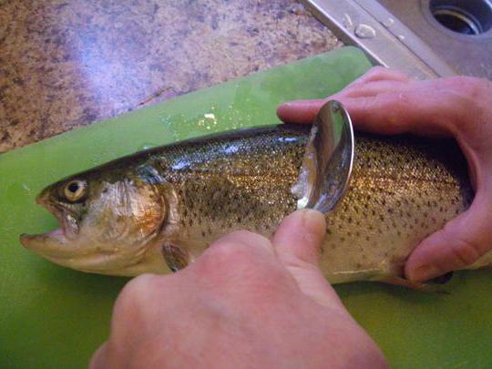 как легко почистить рыбу от чешуи