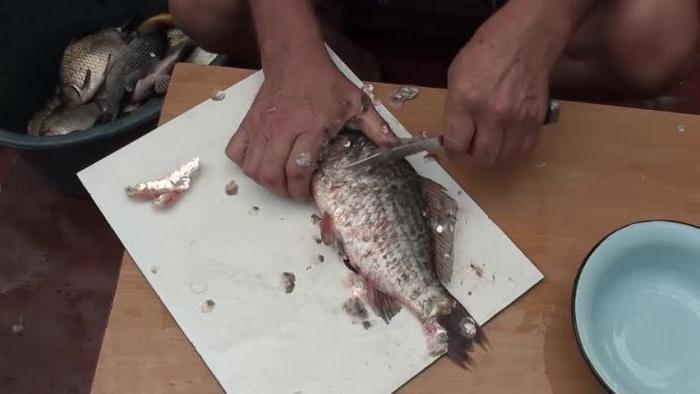 как правильно почистить рыбу