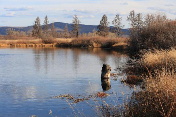 Витим (река): описание и фото