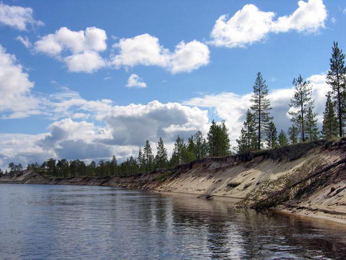 Река Пур: описание и фото: http://fb.ru/article/286438/reka-pur-opisanie-i-foto