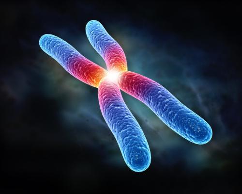 что такое хромосома