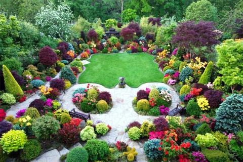 разнообразие растений значение растений в жизни человека