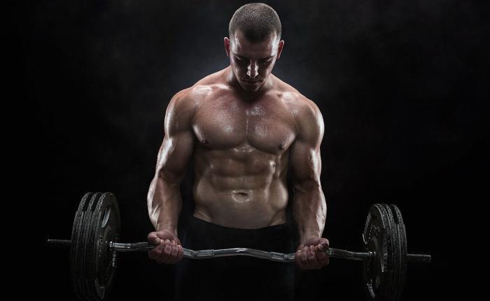Программа тренировок на все группы мышц