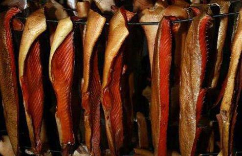 к чему снится рыба копченая скумбрия женщине