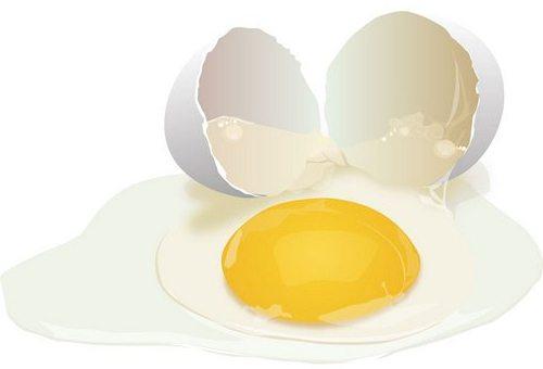 Соник если восне яйсцо курини